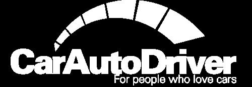 Car Auto Driver